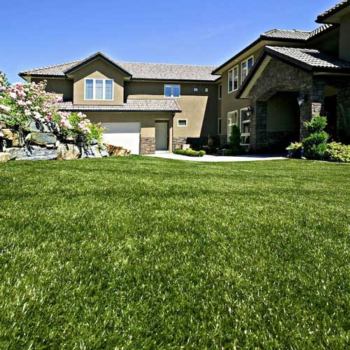 SynLawn Residential Front Yard