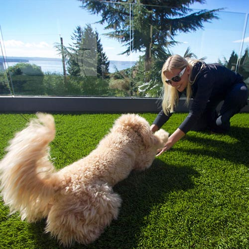 Woman playing with pet dog on SynLawn artificial turf